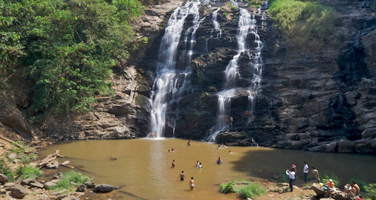 Image result for Abbey Falls tours