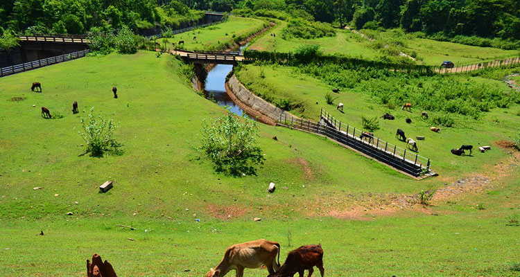 21 Best Places to Visit in Coorg (Madikeri) - Coorg Tourism 2019